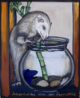 A ferret reaching into a fish bowl